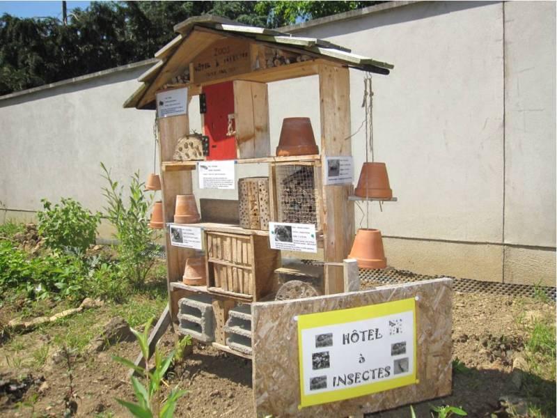 jardin primaire 2
